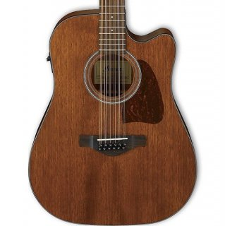 Ibanez Artwood AW5412CE 12-String Acoustic-Electric Guitar, Open Pore Natural ギター