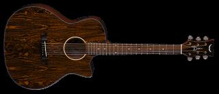 Dean AX E CAIDIE AXS Exotica Series Acoustic Electric Cutaway Guitar ギター