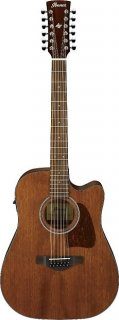 Ibanez Artwood AW5412CEOPN 12 String Dreadnought Size Acoustic Electric Guitar ギター
