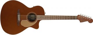Fender Newporter Player with Solid Spruce Top and Mahogany Back Sides ギター