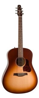 Seagull Entourage Autumn Burst Acoustic Guitar ギター