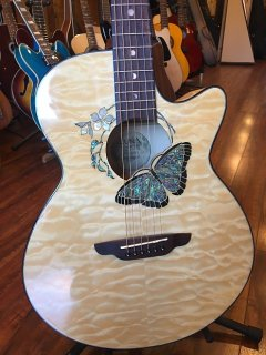 Luna Guitars Fauna Butterfly Acoustic-Electric Guitar Transparent Natural ギター
