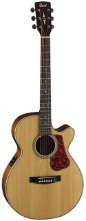 Cort Luce Series L100F Acoustic/Electric Natural Satin ギター