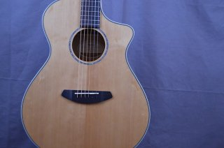 Breedlove Pursuit Exotic Concert Myrtle Wood 2018 New Free Shipping ギター