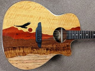 Luna Guitars Vista Eagle Koa Back/Sides Acoustic-Electric Guitar, Unique! Hard Case ギター