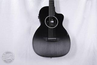 RainSong P-12 NS Parlor [Fishman Prefix] ギター