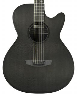 RainSong CH-WS1000NS Acoustic Electric Guitar ギター
