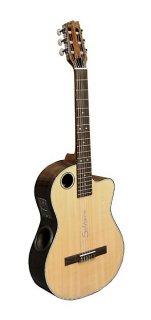 Boulder Creek Classical Cutaway Cedar/Rosewood Guitar w/Pickup, ECL-4 ギター