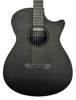 Rainsong CH-OM1000N2 Acoustic Electric Guitar w/OHSC ギター