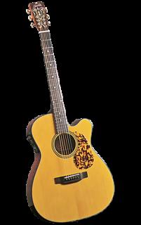 Blueridge BR-143CE ギター