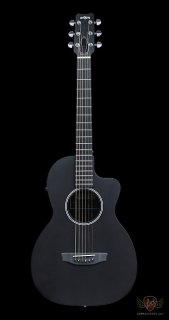 RainSong Parlor Series P12S Parlor 12-Fret Cutaway Acoustic Electric - Satin (940) ギター