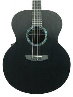 Rainsong CO-JM1000 Jumbo Carbon Fiber Acoustic Electric Guitar Floor Demo ギター