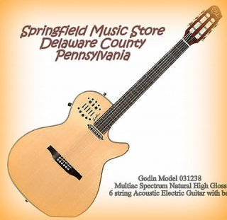 new Godin 031238 Multiac Spectrum Natural HG 6 string Acoustic Electric Guitar with bag ギター