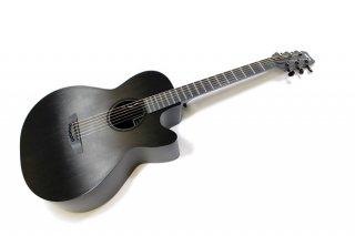RainSong CH WS1000NS ギター