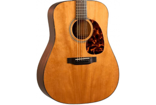 RD-T16 Recording King Torrefied Adirondack Spruce Top, Dreadnought ギター