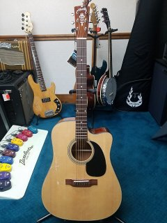NEW Blueridge Contemporary Series BR-40CE Dreadnought with Fishman Electronics ギター