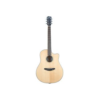 Breedlove Solo Dreadnought 6-String Acoustic Guitar w/ Case ギター