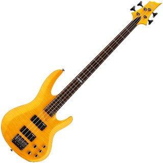 ESP LTD B-154 DX HN Bass - Authorized Dealer ギター