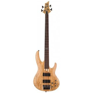 ESP LTD LB204SMFLNS Spalted Maple Natural Satin B Series Fretless Electric Bass Guitar ギター