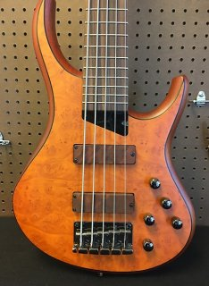 Michael Tobias MTD Kingston Z5 Electric Bass // Fretted Rosewood Neck - Satin Amber ギター