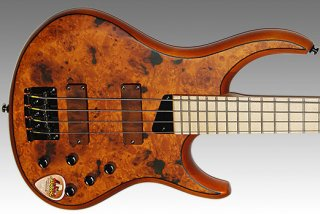 MTD KZ4 4 String Amber Maple Burl Top ギター