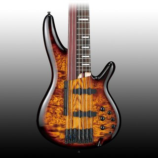 Ibanez SRAS7 Fretless Electric Bass - Dragon Eye Burst ギター