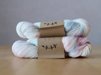 【Lichen and Lace】<br>80/20 Sock<br>i see seashells