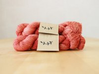 【Lichen and Lace】<br>1ply Superwash Merino Fingering<br>coral