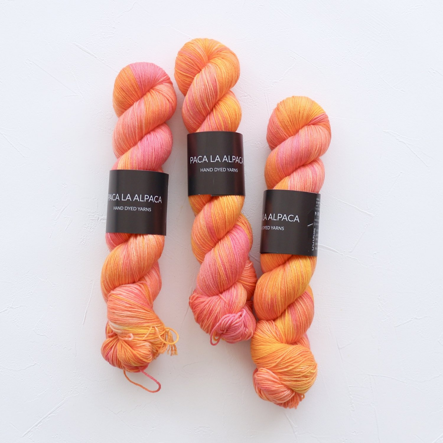 【Paca La Alpaca】<br>Superwash Merino Sock 4Ply<br>Mai Tai