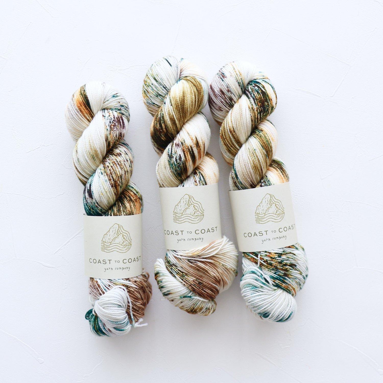 【Coast to Coast Yarn Co】<br>Twist Sock<br>Snow Day