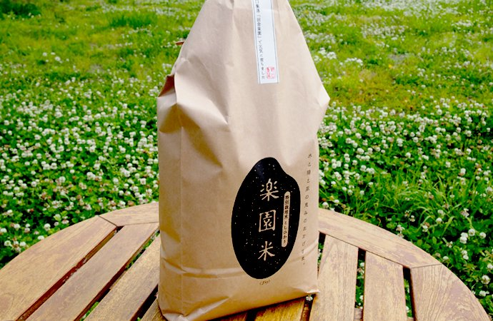 令和2年産 特別栽培米 こしひかり楽園米 【5kg】