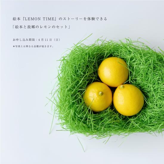 【特別先行予約・4/11締切】絵本『LEMON TIME-檸檬とつなぐ毎日』(作者サイン入り)+「瀬戸内(興居島)カネミ農園のレモン」+「COFFEE TIME」の続きの原稿」(送料込み)