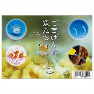 ポストカード(5枚組) ごきげんな魚たち うみまーる企画