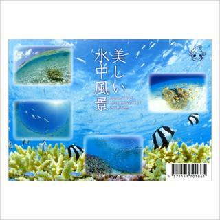 ポストカード(5枚組) 美しい水中風景 うみまーる企画