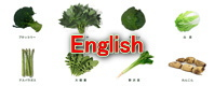 Freeze dried vegetables English