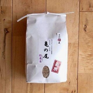 【2021年度産新米_予約販売】敬農吉さんの自然栽培米「亀の尾」