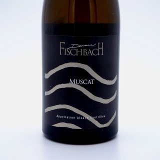 <img class='new_mark_img1' src='https://img.shop-pro.jp/img/new/icons1.gif' style='border:none;display:inline;margin:0px;padding:0px;width:auto;' />Domaine Fischbach Muscat 2019 ドメーヌ・フィシュバック ミュスカ