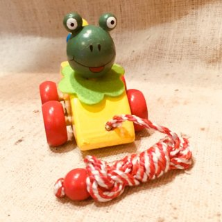 メキシコ カエルの車