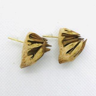 タイ 本物のドリアンの殻のピアス フック D