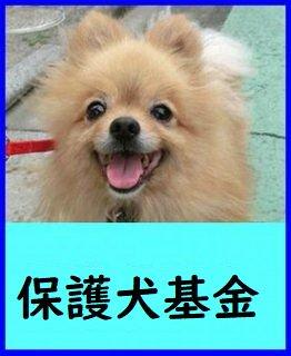 保護犬基金