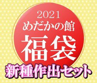 【2021めだかの館福袋】新種作出セット