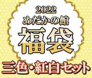 【2021めだかの館福袋】三色・紅白セット