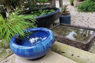 【村長現物】メダカ鉢4 睡蓮鉢 青色陶器