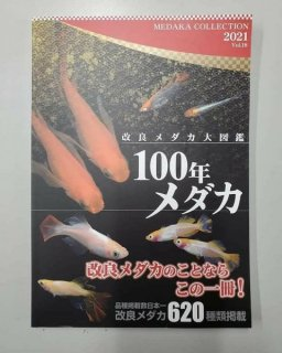改良メダカ大図鑑 100年メダカ vol.18