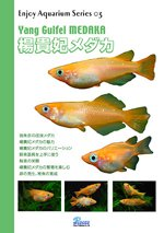 Enjoy Aquarium Series 03 楊貴妃メダカ