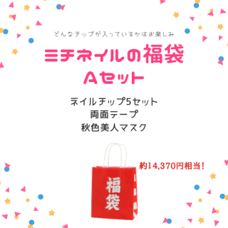 【数量限定】福袋Aセット(チップ5セット入)