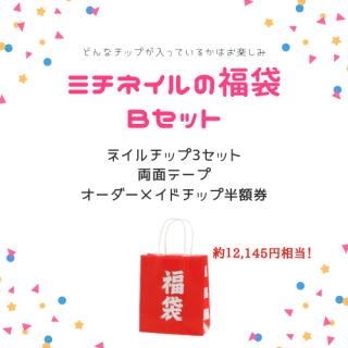 【数量限定】福袋Bセット(チップ3セット入)