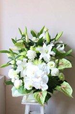 格調高い白いユリと胡蝶蘭のアレンジメント