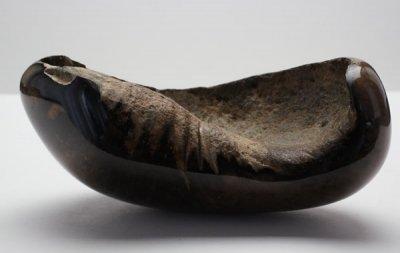クジラの耳骨の化石 Fossil Whale Middle Ear Bone(Tympanic Bulla)
