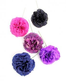 〈全5色〉カーネーション2 hph009 花の直径 約7cm
